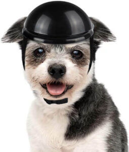 LESYPET Dog Helmet -Paded Pet Motorcycle Helmet Safety Cap