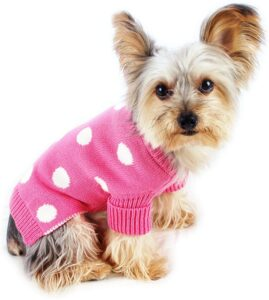 Best small dog sweaters