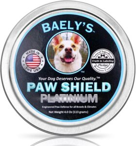 Best Paw Protectors for Dogs