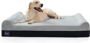 Laifug Orthopedic dog bed