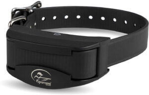 SportDOG Brand Rechargeable In-Ground Fence Add-A-Dog Collar