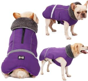 Warm Dog Coat Reflective Dog Winter Jacket Waterproof