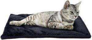 Furhaven Pet - Plush Ergonomic Orthopedic Foam Mattress Dog Bed
