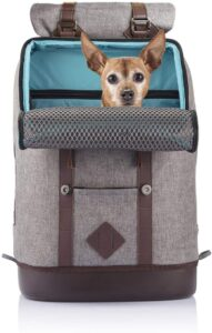 Kurgo Dog Carrier Backpack for Small Pets