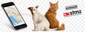 kisspng cat dog pet microchip implant gps tracking unit petpointer tracker gps pour chiens et chats app 5be42562d14c70.3471861115416784348573